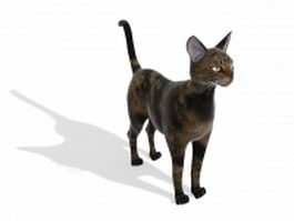 Brown tabby cat 3d model