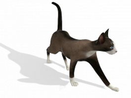 Brown cat 3d model