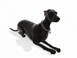 Black dog laying down 3d model