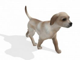 Cute dog walking 3d model