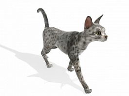 Egyptian Mau cat 3d model