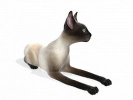 Seal point Siamese cat 3d model