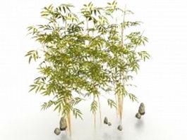 Bamboo plants for garden 3d model