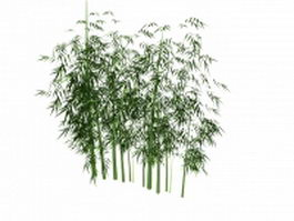 Green bamboo forest 3d model