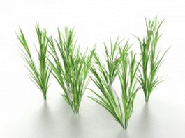 Growing grass 3d model