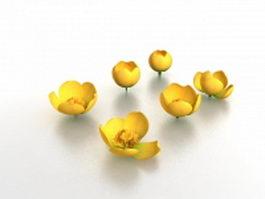 Tulip flowers 3d model