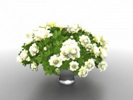 White potted flowers 3d model