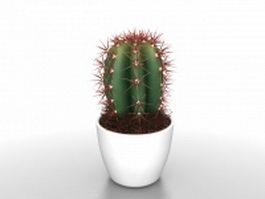 Potted cactus plants 3d model