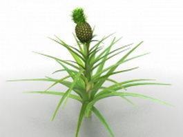 Pineapples plant 3d model