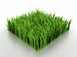 Piece of green lawn 3d model
