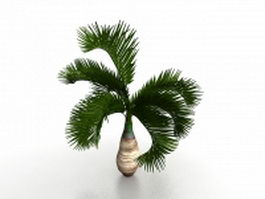 Small palm tree for landscaping 3d model