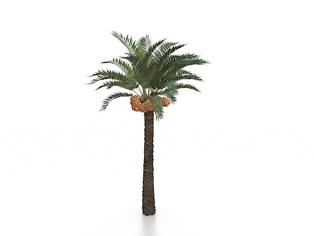 Coconuts and palm tree 3d model 3ds max files free download
