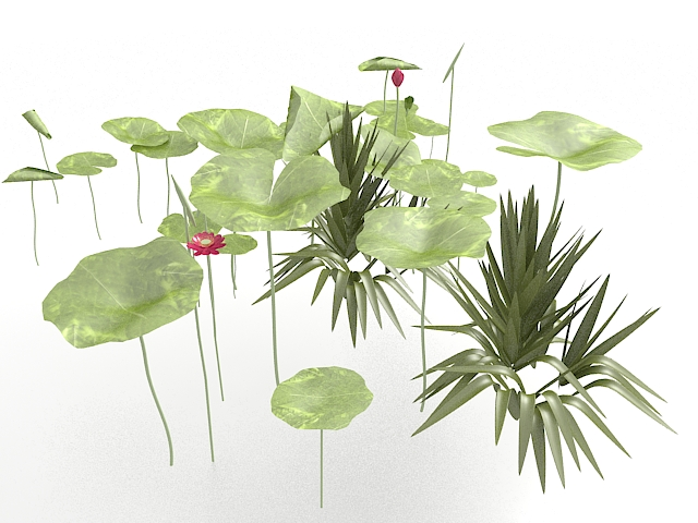 Lotus Flower Leaves 3d Model 3ds Max Files Free Download Modeling