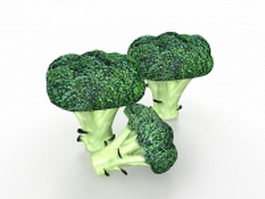 Green broccoli 3d model