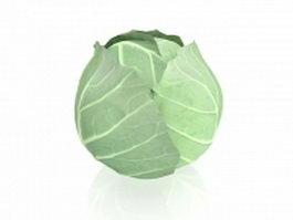 White cabbage 3d model