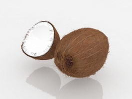 Coconut and open coconut 3d model