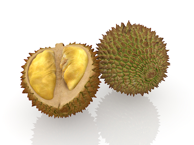 Durian Fruit With Spikes 3d Model 3ds Max Files Free