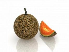 Cantaloupe melon and slice 3d model