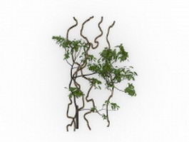 Climbing vines 3d model