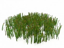 Wilted grass 3d model