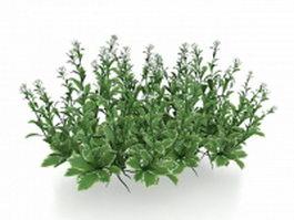 Small flower plants 3d model