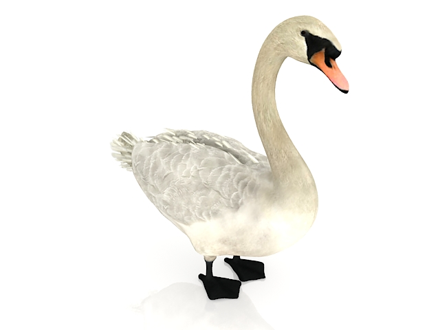 snow goose 3d model 3ds max files free download modeling 28954 on