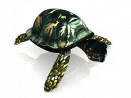 Box turtle 3d model