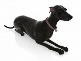 Black dog 3d model