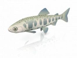 Oncorhynchus masou 3d model