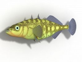 Stickleback fish 3d model