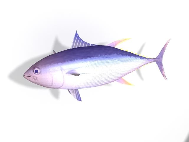 Atlantic Bluefin Tuna Fish 3d Model 3ds Max Files Free