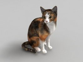 Calico cat 3d model