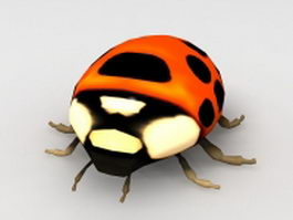 Ladybug insect 3d model