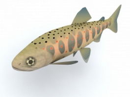 Red-spotted masu salmon 3d model