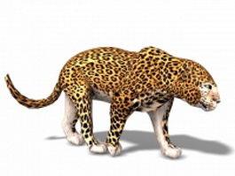 Leopard animal 3d model