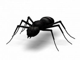 Black carpenter ant 3d model