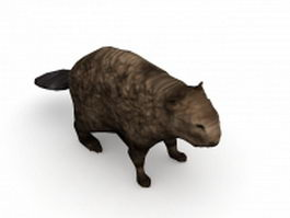 Wetland animal beaver 3d model
