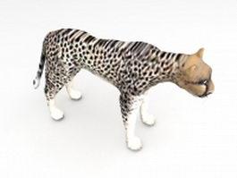 African cheetah 3d model