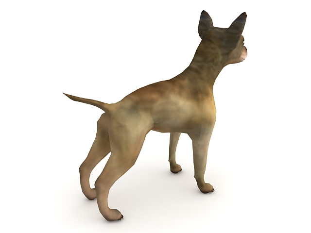 Chihuahua Dog 3d Model 3ds Max Files Free Download