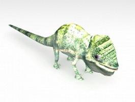 American chameleon 3d model
