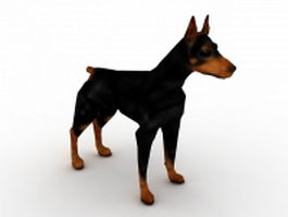Doberman dog 3d model
