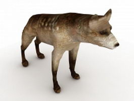 Brown hyena 3d model