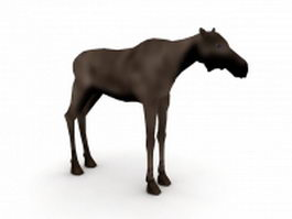 Female moose 3d model