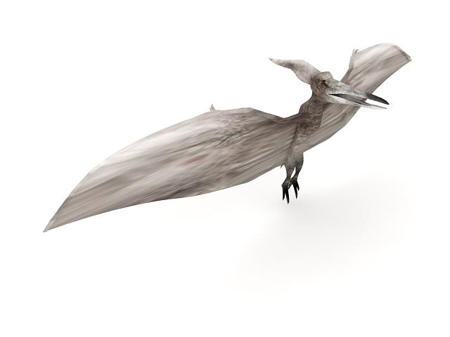 Pteranodon dinosaur 3d model