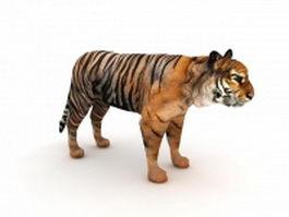 Indian tiger 3d model