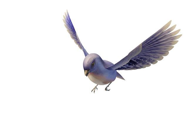 western bluebird 3d model for 3ds max highly realistic 3d bird model flying blue bird available 3d file format max 3d studio max 2010 standard