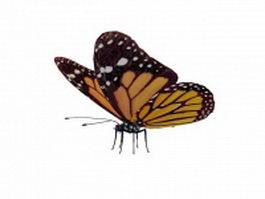 Viceroy butterfly 3d model