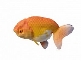 Orange Ranchu goldfish 3d model