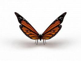 Australian painted lady butterfly 3d model