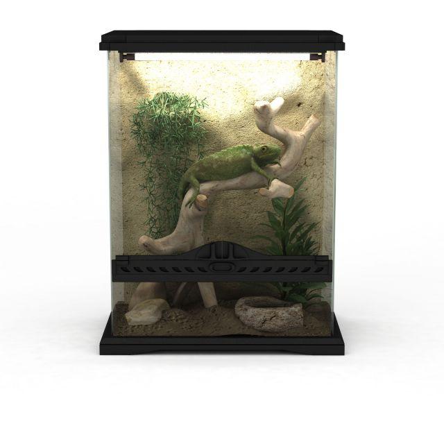 Lizard Terrarium 3d Model 3ds Max Files Free Download Modeling